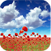 Download 1023 Flowers Live Wallpapers 6.8 APK