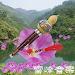 Download 148 Chinese Hulusi song 5.6.6 APK