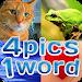 Download 4 Pics 1 Word 1.27 APK