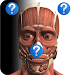 Download Anatomy Quiz Free 2.0 APK