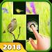Download Bird Piano 2018 1.0 APK