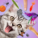 Download Cat Games Collection 2.6 APK
