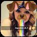 Download Funny Face Maker For Social Apps 1.1 APK