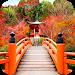 Download Garden Live Wallpapers HD 1.12 APK