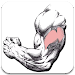 Download Gym Exercises & Workouts 2.75 APK