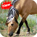 Download Horse 1.1 APK