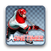 Download Ice Hockey - One Timer (Free) 1.01.09 APK