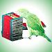 Download Kili Josiyam - Tamil 1.0 APK
