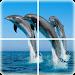 Download Ocean Puzzle 1.0.7 APK