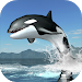 Download Orca Survival Simulator 1.0 APK