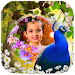 Download Peacock Photo Frames 1.1 APK