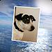 Download PhotoFlight Slideshow FREE 1.04 APK