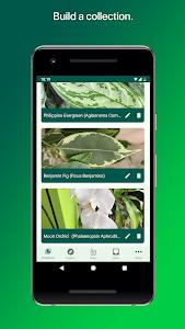 Download PlantSnap - Identify Plants, Flowers, Trees & More 1.20 APK
