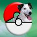 Download Pokedog GO 1.1 APK