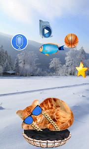 Download Real Talking Cat 1.2 APK