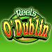 Download Reels O Dublin HD Slot Machine 1.0 APK