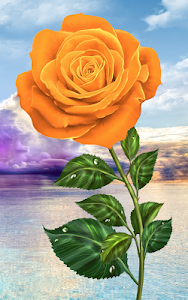 Download Rose. Magic Touch Flowers 2.2.6 APK