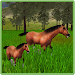 Download Ultimate Horses of the Forest 1.4 APK