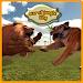 Download War of Jungle King : Lion Sim 1.5 APK