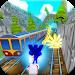 Download Subway Sonic Train Surf 1.1 APK